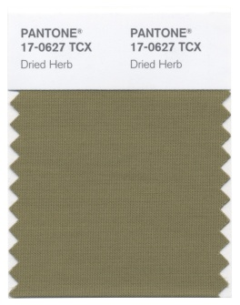 1423680654PANTONE_17_0627_Dried_Herb