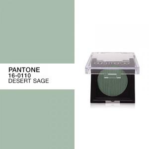 800-pantone-desert-sage-600x600