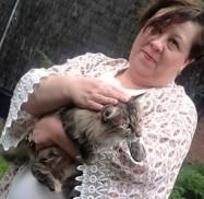 gato y kimono